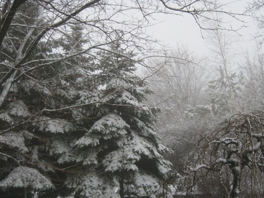 Зима в мариуполе
