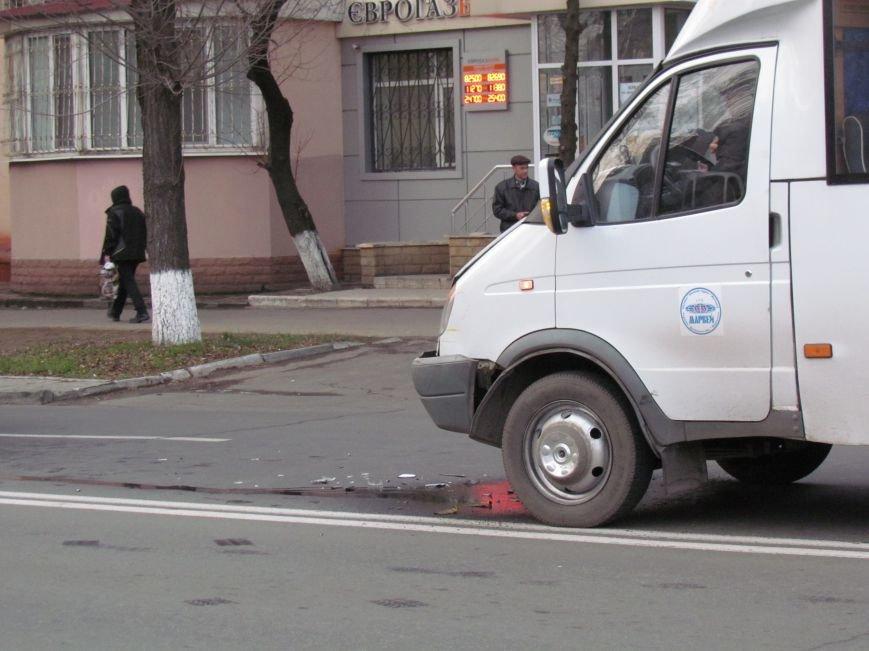 В Мариуполе  из-за собаки маршрутка с пассажирами  влетела в микроавтобус (Фото), фото-2