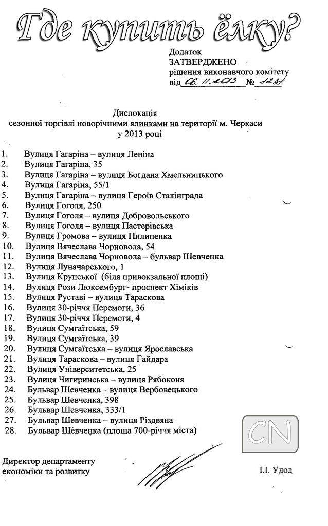 Горисполком утвердил 28 мест продажи новогодних елок в Черкассах, фото-1