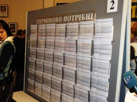 Ярмарка вакансий: в Мариуполе «Зеленстрой» предлагает поработать водителем за 3 тыс. грн. (ФОТО), фото-7