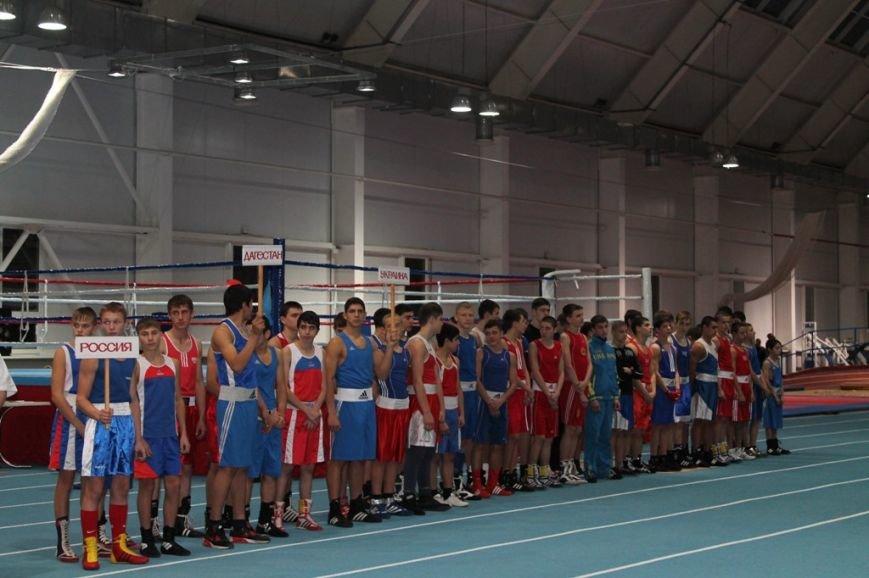 На Международные соревнования по боксу в Артемовск съехались сильнейшие спортсмены Украины и ближнего зарубежья, фото-1
