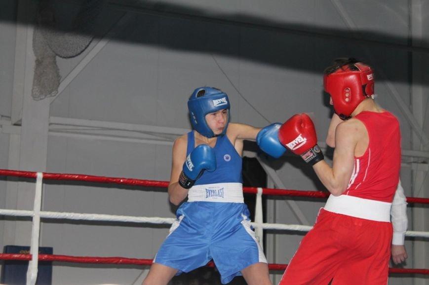 На Международные соревнования по боксу в Артемовск съехались сильнейшие спортсмены Украины и ближнего зарубежья, фото-4