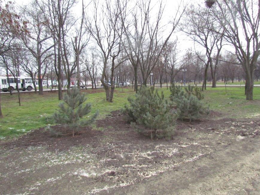 В Мариуполе строят европейскую площадку в парке им. Лепорского  (ФОТО), фото-4