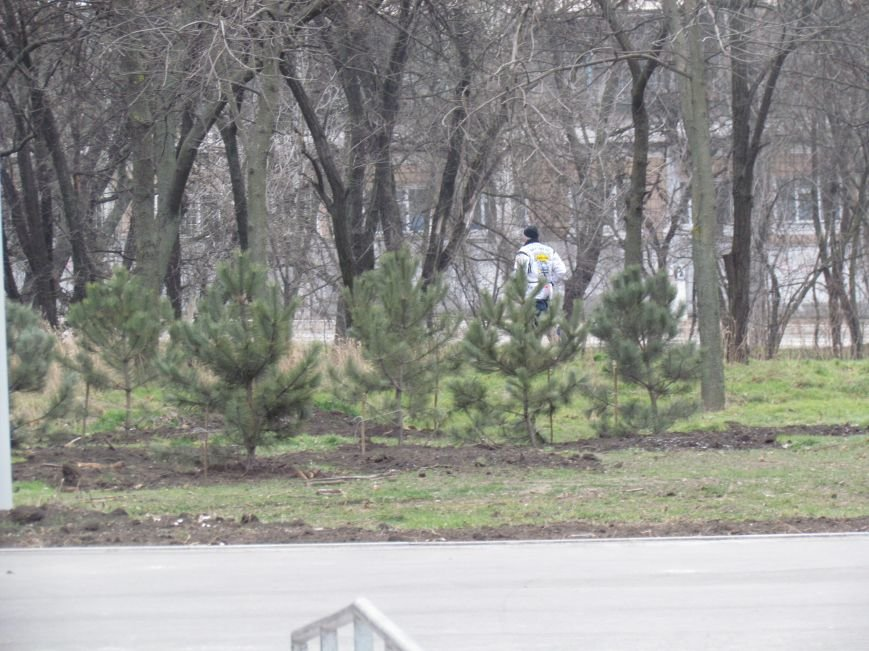 В Мариуполе строят европейскую площадку в парке им. Лепорского  (ФОТО), фото-3