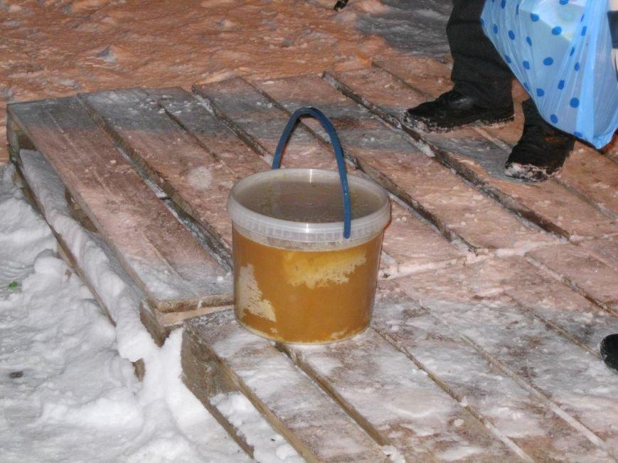 На «евромайдане» в Чернигове митинговали даже… домашние любимцы, фото-1