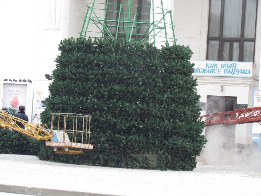 В Мариуполе монтируют главную елку города (ФОТОФАКТ), фото-2