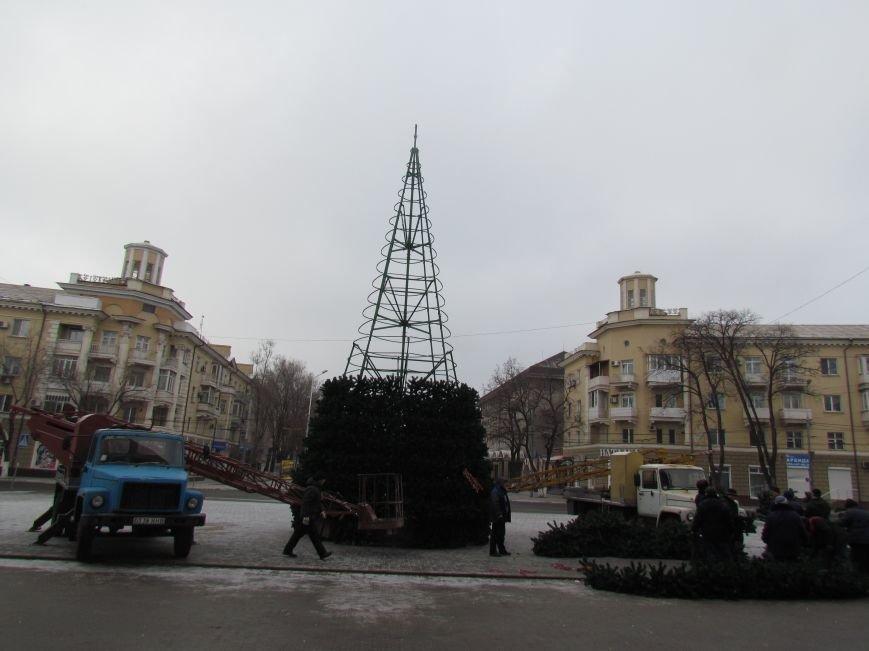 В Мариуполе монтируют главную елку города (ФОТОФАКТ), фото-4