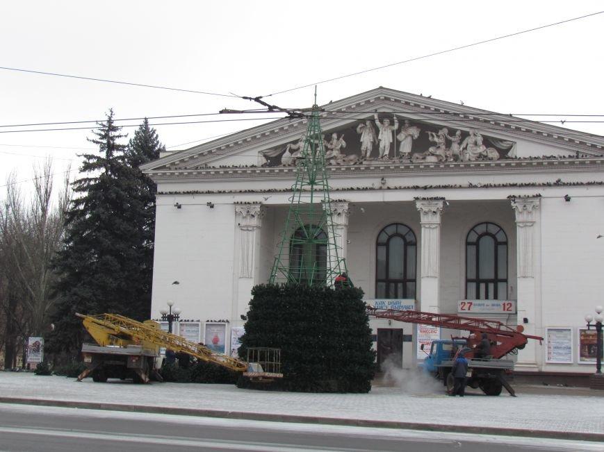 В Мариуполе монтируют главную елку города (ФОТОФАКТ), фото-1
