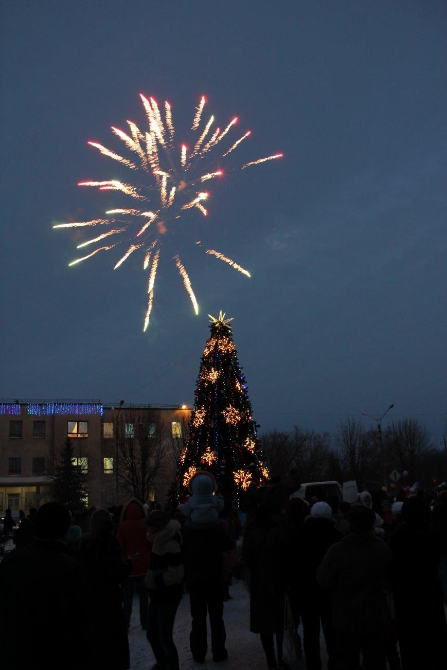 Открытие Новогодней елки в Димитрове, фото-7