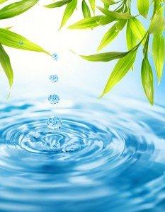 Вода - основа нашей жизнедеятельности, фото-1