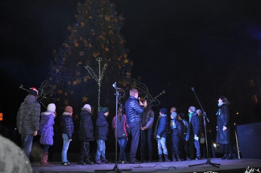У центрі Львова відкрили ялинку у символах України та Євросоюзу (ФОТО), фото-1