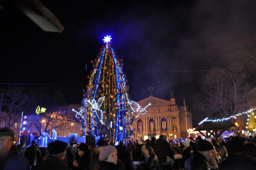 У центрі Львова відкрили ялинку у символах України та Євросоюзу (ФОТО), фото-4