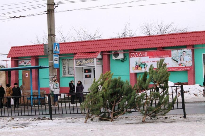 ФОТОФАКТ: На артемовской «Долине роз» вандалы спилили ели, а на бульваре незаконно работает елочный базар, фото-3