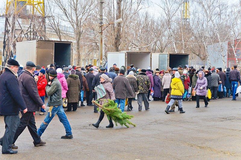 How much is the fish? В Луганске прошла Новогодняя ярмарка (ФОТО), фото-3