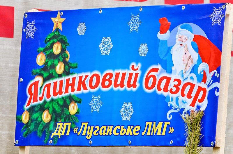 How much is the fish? В Луганске прошла Новогодняя ярмарка (ФОТО), фото-12