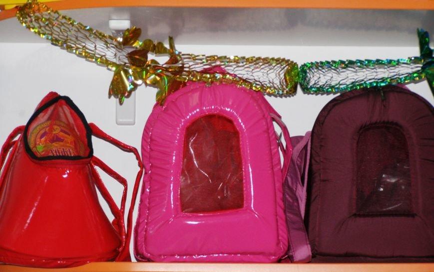 Сделайте подарок в Новогоднюю ночь своему домашнему любимцу вместе с магазином «ПЕСиК» города Красноармейска, фото-12