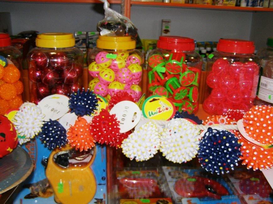 Сделайте подарок в Новогоднюю ночь своему домашнему любимцу вместе с магазином «ПЕСиК» города Красноармейска, фото-8