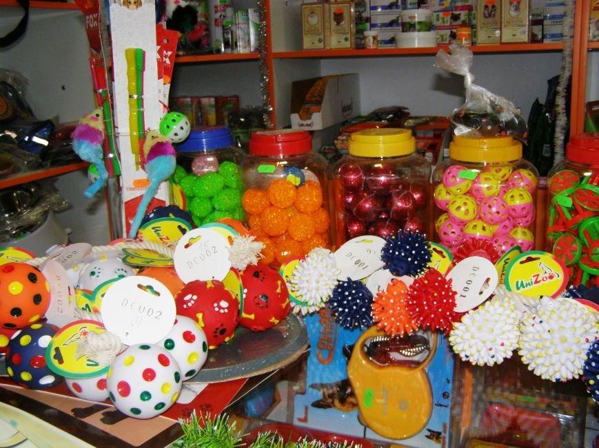 Сделайте подарок в Новогоднюю ночь своему домашнему любимцу вместе с магазином «ПЕСиК» города Красноармейска, фото-10