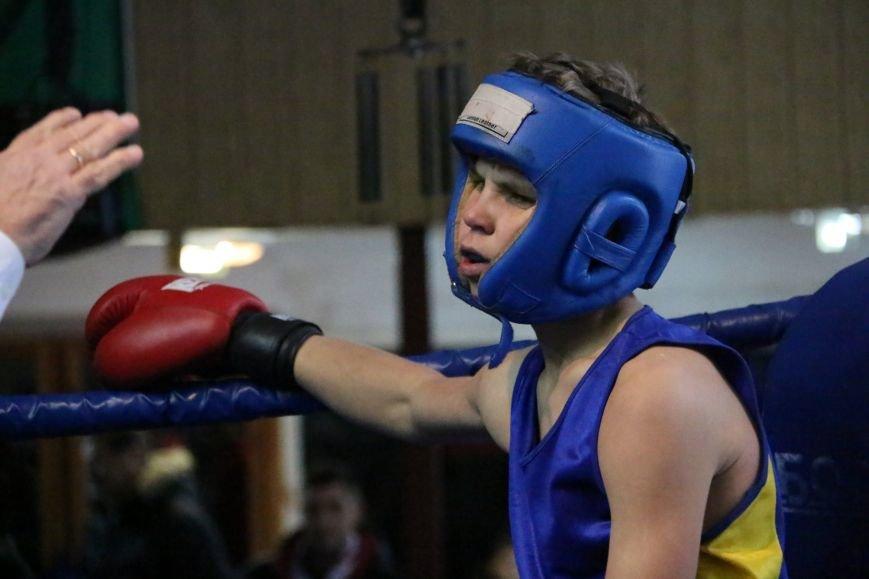 Юные боксеры Черниговской области стали победителями международного турнира (Фоторепортаж), фото-4