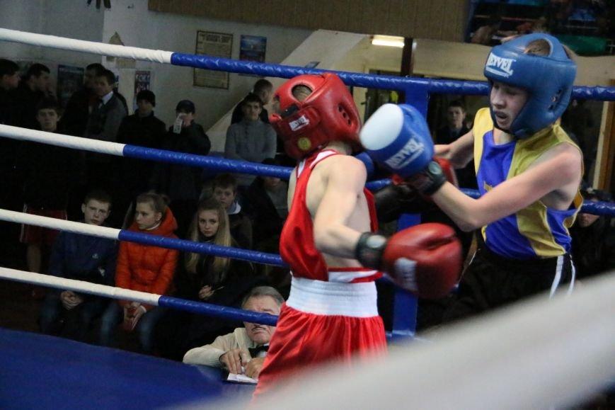 Юные боксеры Черниговской области стали победителями международного турнира (Фоторепортаж), фото-1