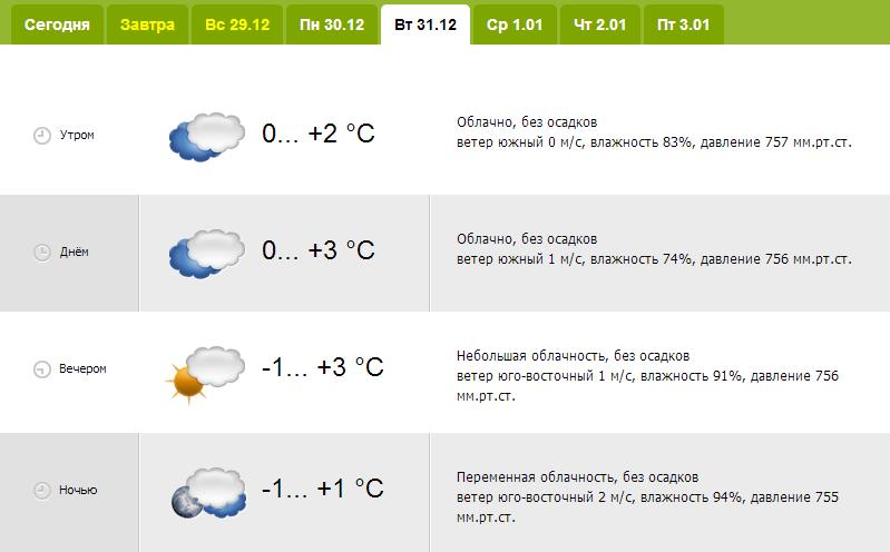 20131228_гродно_погода_новый_год