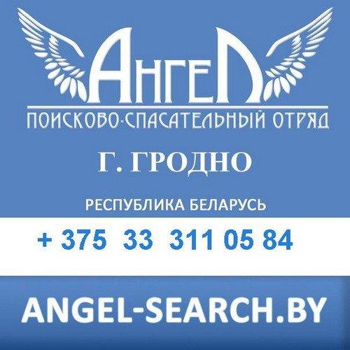 20131227_гродно_псо ангел_пропавшие-1
