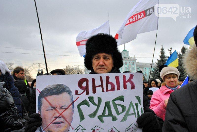 Луганск. Политические итоги года: от антифашизма к Евромайдану, фото-4