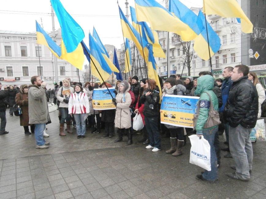 Харьковские «евромайдановцы» придумали новый перфоманс: вспомнили избиение митингующих в Киеве перебеганием тротуара (фото), фото-17
