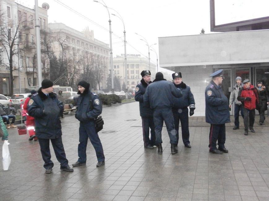 Харьковские «евромайдановцы» придумали новый перфоманс: вспомнили избиение митингующих в Киеве перебеганием тротуара (фото), фото-10