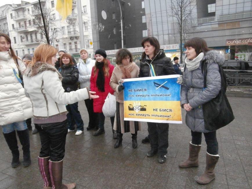 Харьковские «евромайдановцы» придумали новый перфоманс: вспомнили избиение митингующих в Киеве перебеганием тротуара (фото), фото-2