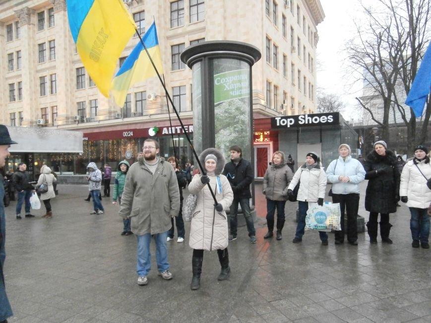 Харьковские «евромайдановцы» придумали новый перфоманс: вспомнили избиение митингующих в Киеве перебеганием тротуара (фото), фото-16