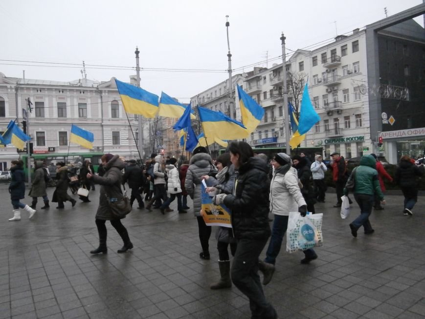 Харьковские «евромайдановцы» придумали новый перфоманс: вспомнили избиение митингующих в Киеве перебеганием тротуара (фото), фото-13