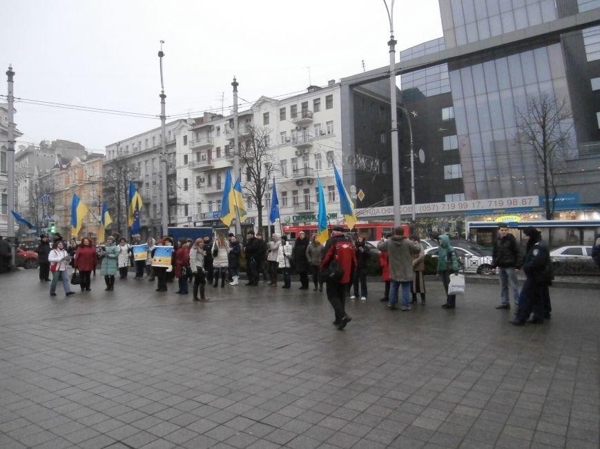 Харьковские «евромайдановцы» придумали новый перфоманс: вспомнили избиение митингующих в Киеве перебеганием тротуара (фото), фото-12