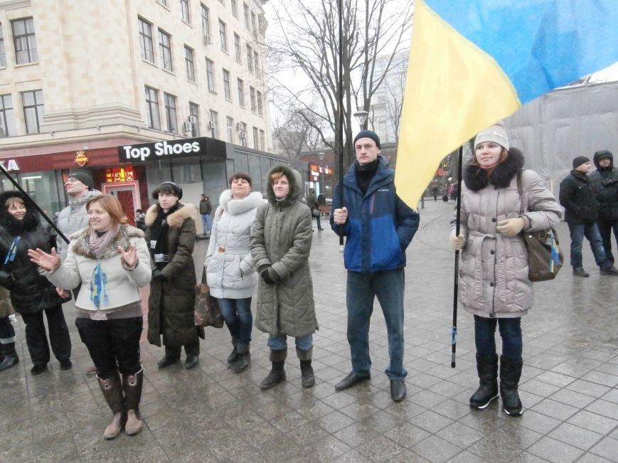 Харьковские «евромайдановцы» придумали новый перфоманс: вспомнили избиение митингующих в Киеве перебеганием тротуара (фото), фото-7