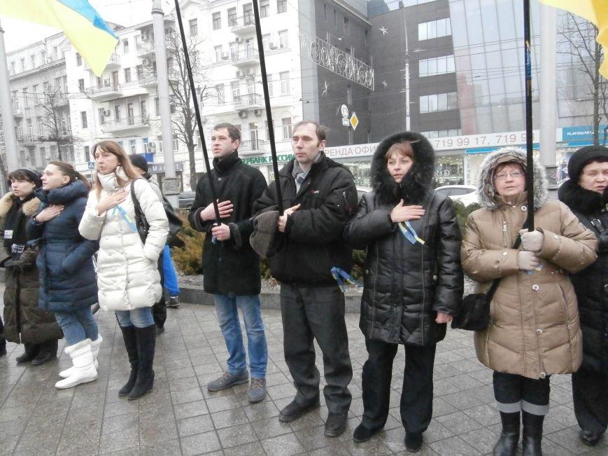 Харьковские «евромайдановцы» придумали новый перфоманс: вспомнили избиение митингующих в Киеве перебеганием тротуара (фото), фото-15