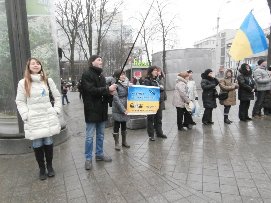 Харьковские «евромайдановцы» придумали новый перфоманс: вспомнили избиение митингующих в Киеве перебеганием тротуара (фото), фото-8