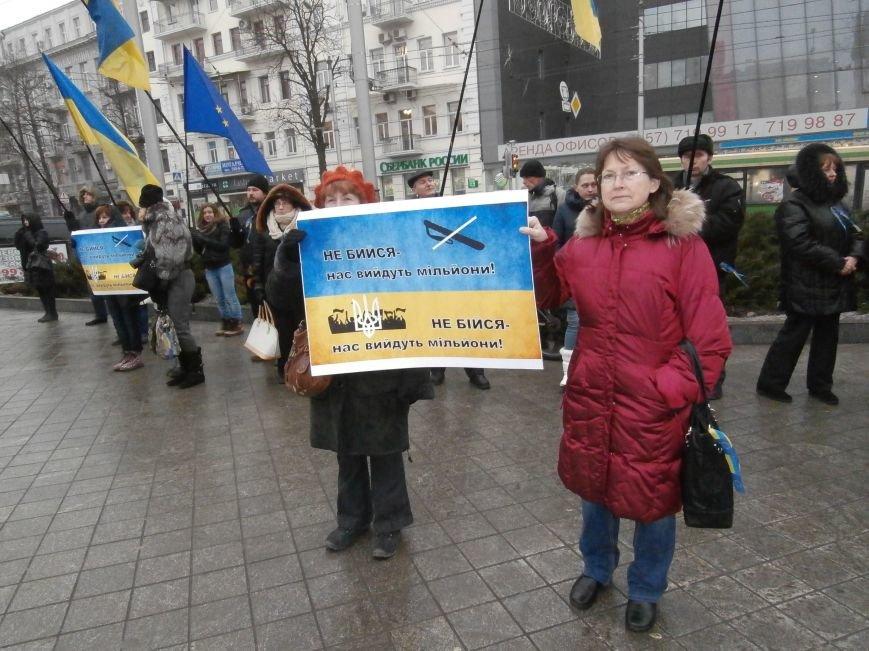 Харьковские «евромайдановцы» придумали новый перфоманс: вспомнили избиение митингующих в Киеве перебеганием тротуара (фото), фото-3