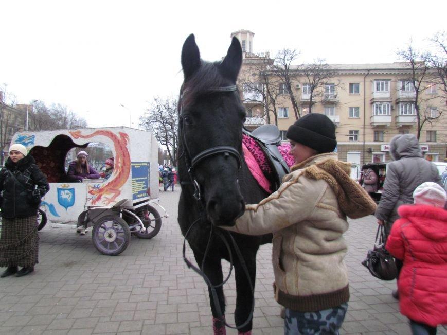 Символ Нового года мариупольский конь Тарзан не буйный и любит трудиться (ФОТО), фото-4