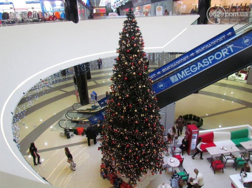 Новогодние елки по-мариупольски (ФОТОРЕПОРТАЖ), фото-2