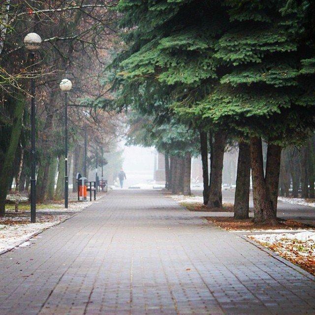 Новогодний Белгород в Instagram, фото-1