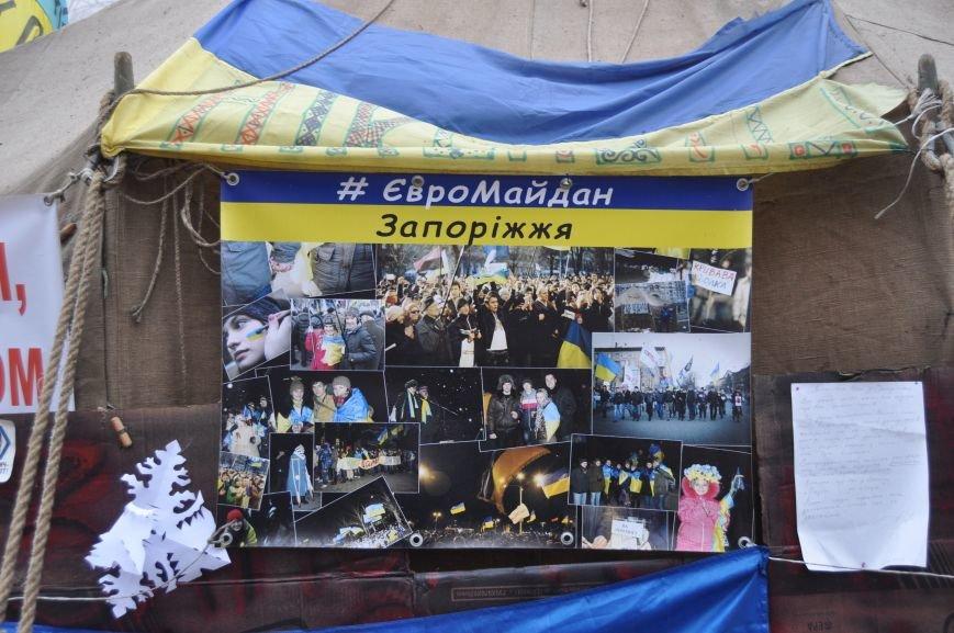 ФОТОРЕПОРТАЖ: Группа запорожцев отпраздновала новый год в «революционных» условиях на столичном Майдане, фото-1