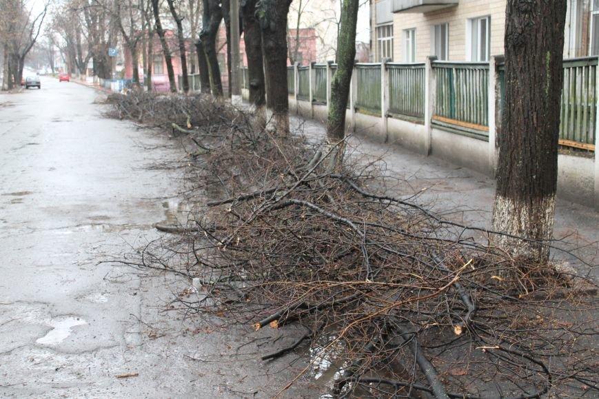 Сумчане требуют от «Сумыжилья» наконец-то вывезти опавшую листву (ФОТО), фото-2