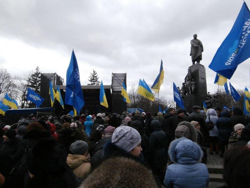 Центр Харькова заполонили «поклонники курса президента Януковича». Правда, многие не знают, зачем и почему пришли (фото), фото-7
