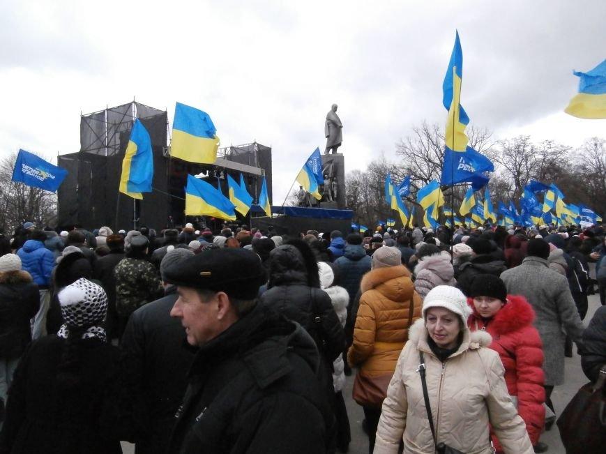 Центр Харькова заполонили «поклонники курса президента Януковича». Правда, многие не знают, зачем и почему пришли (фото), фото-6