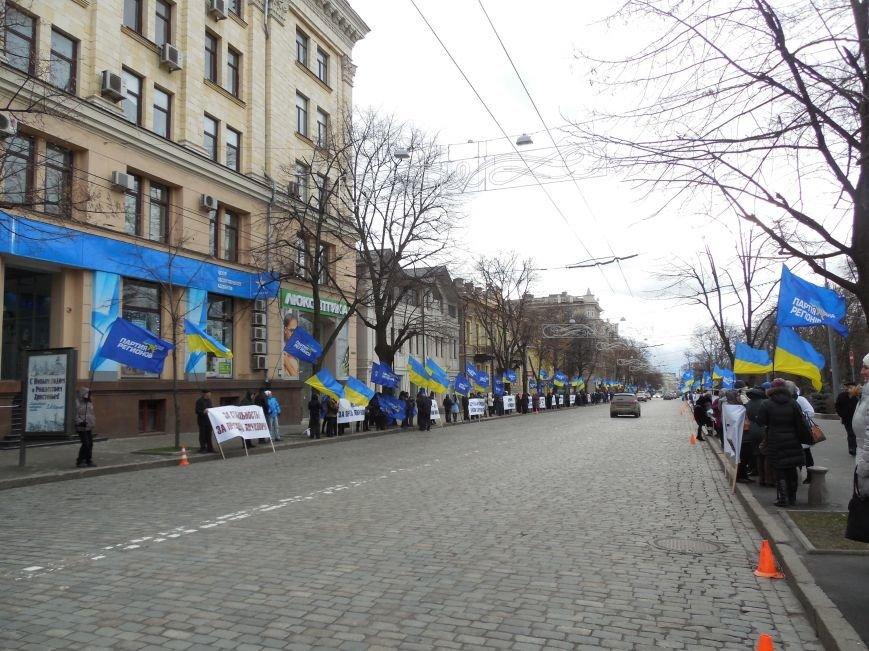 Центр Харькова заполонили «поклонники курса президента Януковича». Правда, многие не знают, зачем и почему пришли (фото), фото-4