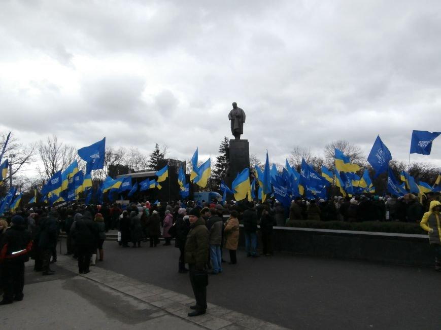 Центр Харькова заполонили «поклонники курса президента Януковича». Правда, многие не знают, зачем и почему пришли (фото), фото-10