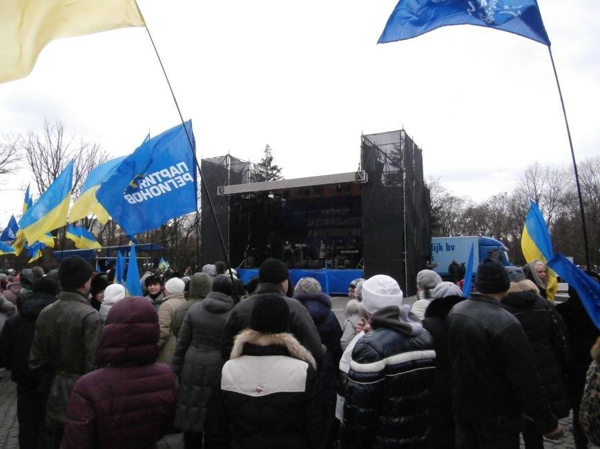 Центр Харькова заполонили «поклонники курса президента Януковича». Правда, многие не знают, зачем и почему пришли (фото), фото-11