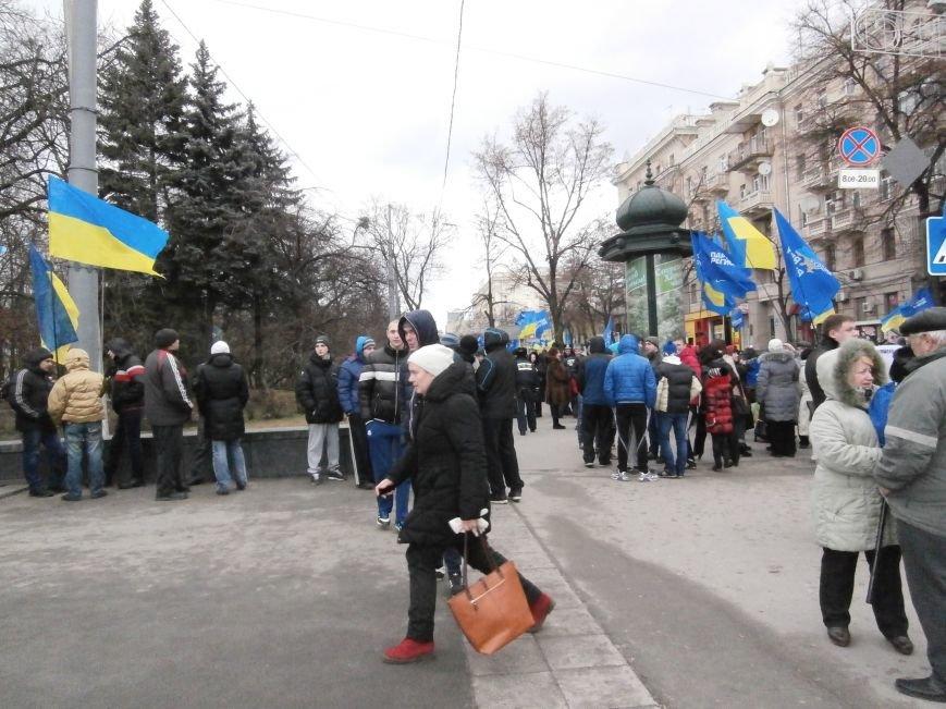 Центр Харькова заполонили «поклонники курса президента Януковича». Правда, многие не знают, зачем и почему пришли (фото), фото-9
