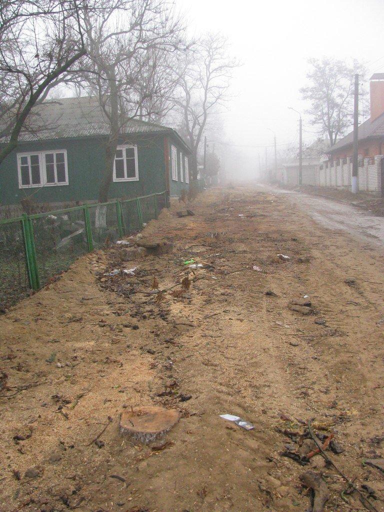 В Очакове вырубили деревья, которые мешали провести газ и воду в дом родственника николаевского депутата, фото-1
