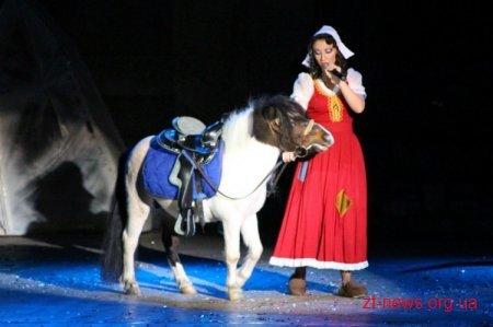 Житомиряни взяли участь у «Різдвяному каламбурі», фото-3